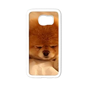 super shining day Cellphone Accessories Boo Dog the life of the world's cutest dog Samsung Galaxy S6 TPU Material Shell