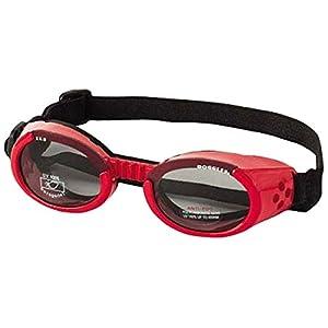 Doggles ILS Medium Shiny Red and Smoke Lens