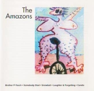 Price comparison product image The Amazons