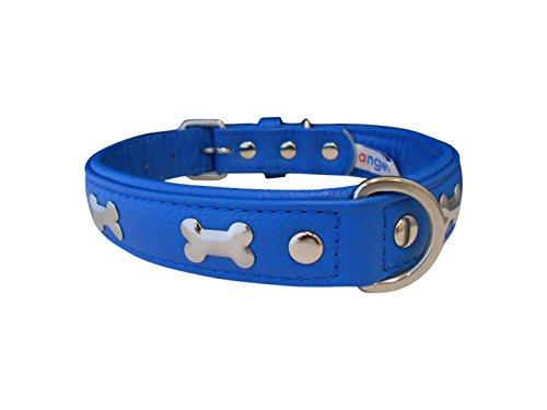 "Angel Pet Supplies 41307 Leather Bones Dog Collar, 22"" x 1"", Cobalt Blue"
