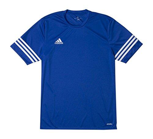 Ans Cobalt Entrada Maillot Adidas Bleu blanc 14 q1g4nw8Bx