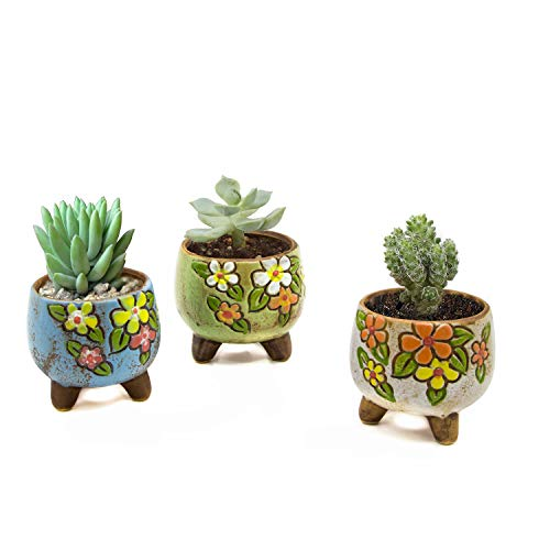 Goldblue Vintage Style Ceramic Succulent Pot Vintage Planter Pots 2.5 inch Hand-Painted Ceramic Succulent Planter Pot Cactus Plant Pot Set of 3