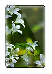 Moddcasess Premium Protective Hard Cases For Ipad Mini- Nice Design - Resolution Cool Nature Spring Small