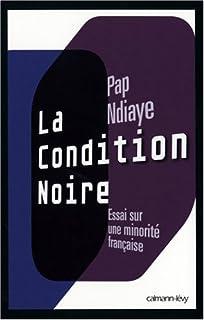 La condition noire : essai sur une minorité française, Ndiaye, Pap