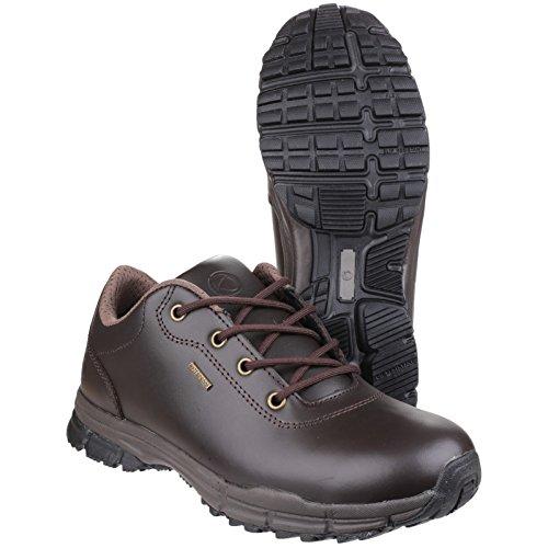 Cotswold Mens Alderton Waterproof Leather Walking Shoes Marrón