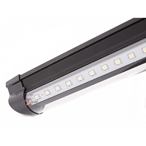 Duo Led Light System in US - 3