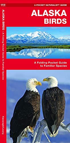 Alaska Birds: A Folding Pocket Guide to Familiar Species (Wildlife and Nature Identification)
