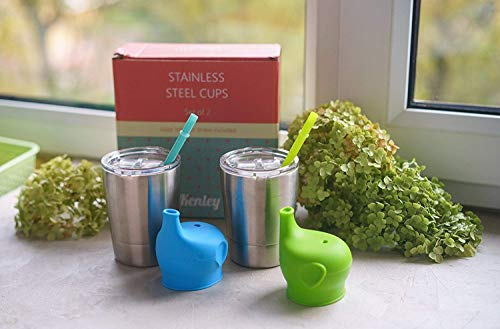 Kenley Stainless Steel Cups for Baby
