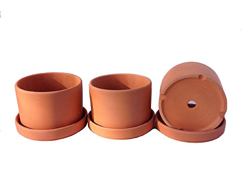 Set of 3 Natural Terracotta Round Fat Walled Garden Planters with Individual Trays. Indoor or Outdoor Use