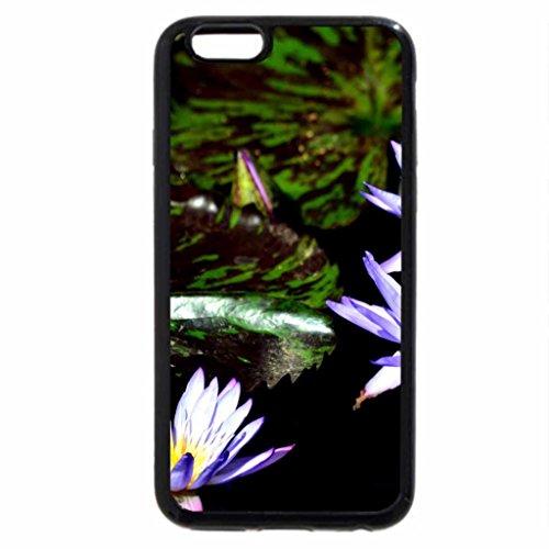 iPhone 6S / iPhone 6 Case (Black) Beautiful Blue Lotus