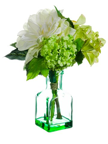 10-HydrangeaDahliaSnowball-in-Glass-Vase-White-Green-pack-of-12