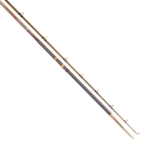 Tica Casting Fishing Rod (Medium Heavy, 13-Feet /2-Piece, 40- 60-Pound)