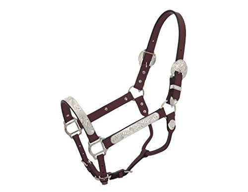 Royal King Silver Show Halter (Yearling Show Halter)