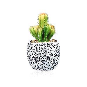 SILUKER Decorative Artificial Succulent Mini Faux Succulent Cacti Plants in Round Black and White Planter Pots 53