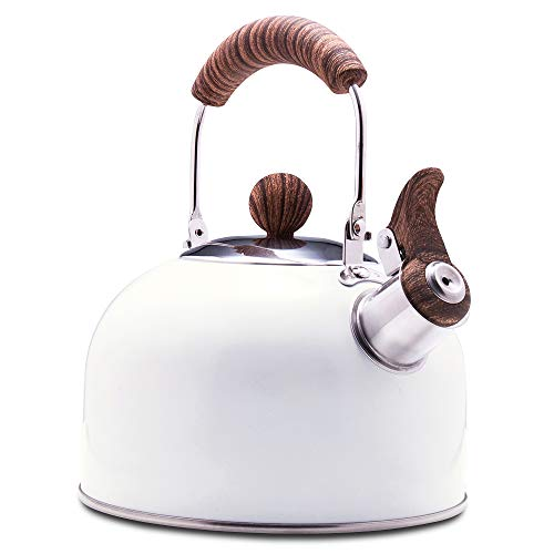 ROCKURWOK Tea Kettle