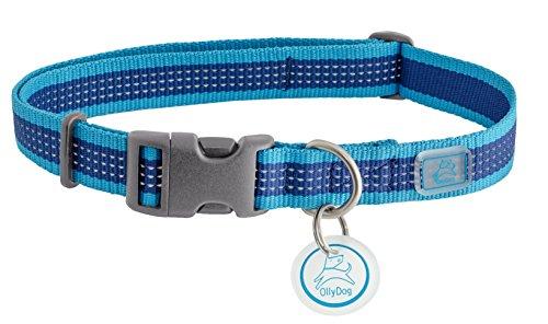 Ollydog Dog Pack - OllyDog MTN Reflective Collar, Large, Aloha Blue
