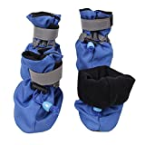 Image of royalwise Dog Boots Pet Shoes Soft and Breathable for Small Dogs 6-15lb All Weather (Medium, Blue)