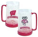 Wisconsin Badgers NCAA Crystal Freezer Mug