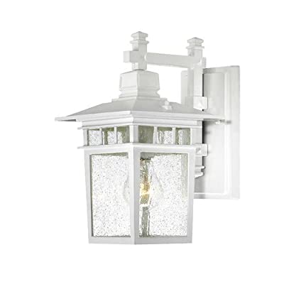 Nuvo Lighting Cove Neck Wall Lantern/Arm Down with Clear Seeded Glass