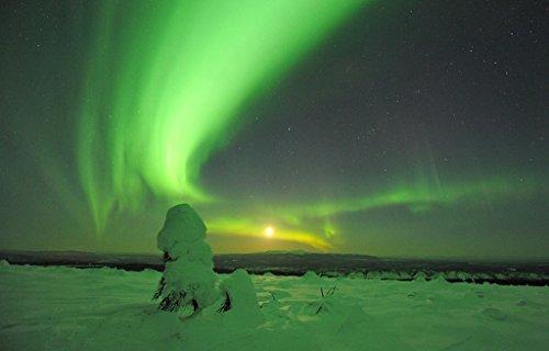 Beneath the Aurora