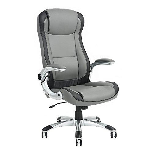 Ergonomic Pneumatic Adjustable Seat Height Executive