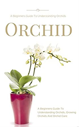 How To Grow Incredibly Gorgeous Orchids Indoors
