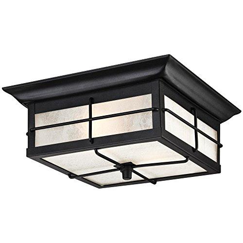 Outdoor flush mount lighting amazon westinghouse 6204800 orwell 2 light outdoor flush mount fixture textured black workwithnaturefo