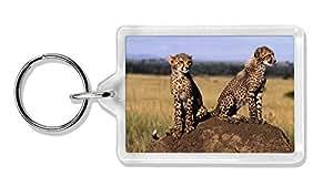 Guepardos en Mira Foto llavero animal de regalo llenador de la media