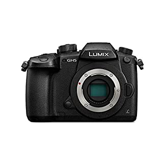 Panasonic DC-GH5GA-K Mirrorless Camera (Black) 7
