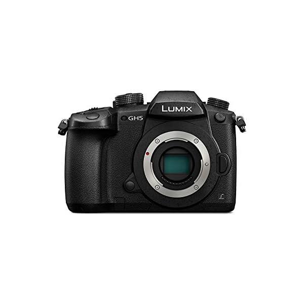 RetinaPix Panasonic Lumix G DC-GH5 20MP 4K Mirrorless Camera - Body Only
