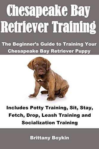 - Chesapeake Bay Retriever Training: The Beginner's Guide to Training Your Chesapeake Bay Retriever Puppy: Includes Potty Training, Sit, Stay, Fetch, Drop, Leash Training and Socialization Training