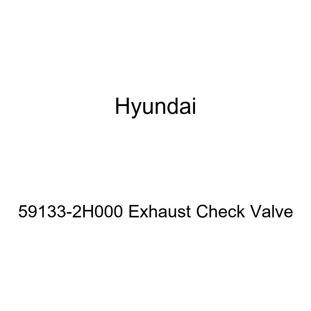 Genuine Hyundai 59133-2H000 Exhaust Check Valve