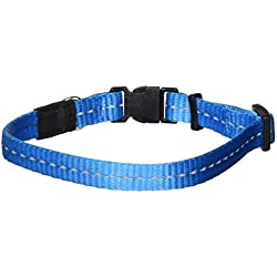 Reflective Dog Collar for Small Dogs, Adjustable from 8-13 inches, Turquoise