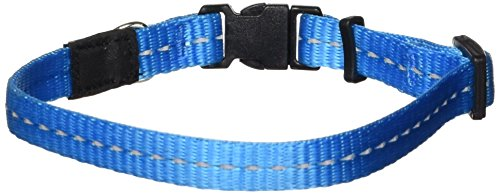 ROGZ Reflective Dog Collar for Small Dogs, Adjustable from 8-13 inches, Turquoise