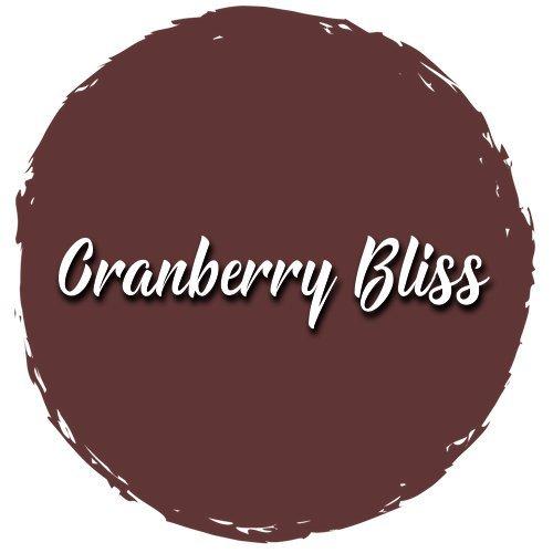 Shabby Paints Chalk Acrylic (Cranberry Bliss, 16 oz.)
