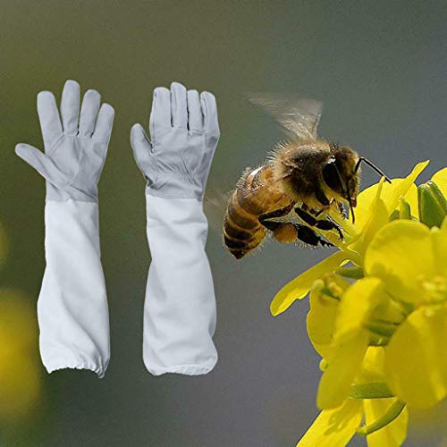 ☀ Dergo ☀ Beekeeping Gloves Goatskin Bee Keeping with Vented Beekeeper Long ()