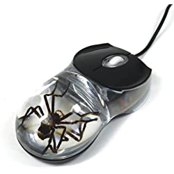 REALBUG Spider Computer Mouse with Clear Background