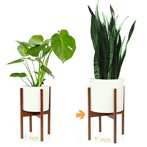 Fox & Fern Mid-Century Modern Plant Stand - Cherry - EXCLUDING 11