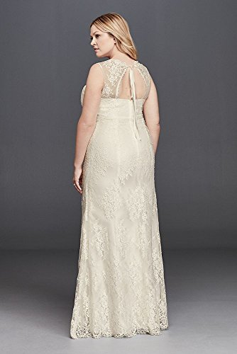 Lace V-Neck Plus Size Wedding Dress with Empire Waist ...