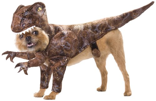 Animal Planet PET20109 Raptor Dog Costume Small