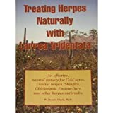 img - for Treating Herpes Naturally With Larrea Tridentata: an Effective, Natural Remedy for Cold Sores, Genital Herpes, Shingles, Chickenpox, Epstein-Barr, and Other Herpes Outbreaks book / textbook / text book