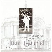Celebracion De 25 Anos De Gabriel En Bellas Artes