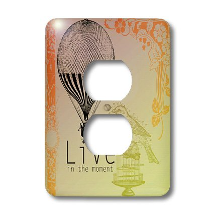 3dRose Lsp_79179_6 Live in The Moment Vintage Bird and Hot Air Balloon 2 Plug Outlet Cover