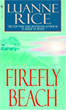 Firefly Beach (Hubbard's Point/Black Hall Series Book 1)