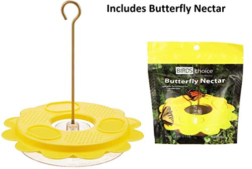 Birds Choice Butterfly Feeder Kit - Includes 1001 Flutterby Plus a Bonus Pack of Butterfly Nectar