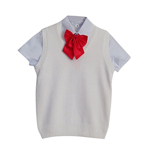手伝う木製特徴BESTLEE ベスト 全9色 スクールベスト 制服ベスト ニットベスト Vネック 高校生 JK 女子 かわいい