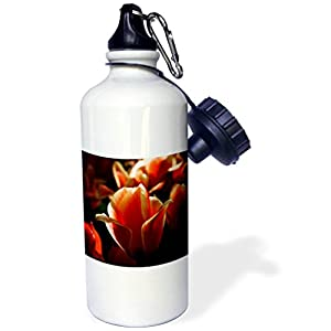 3dRose Alexis Photography - Flowers Tulip - Slightly illuminated decorative red and beige tulip - 21 oz Sports Water Bottle (wb_273791_1)