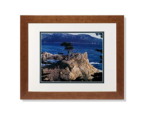 (Art Prints Inc The Lone Cypress Tree Pebble Beach Ocean Photo A/G Matted Picture Honey Framed)