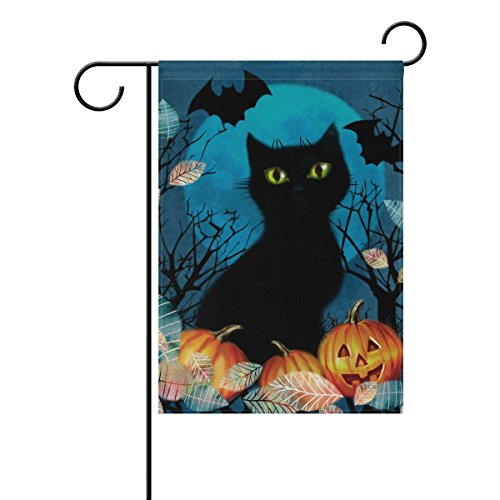 black cat halloween pumpkin double