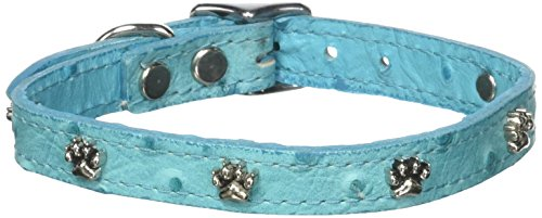 """OmniPet Faux Ostrich Signature Leather Dog Collar with Paw Ornaments, Turquoise, 14"""""""